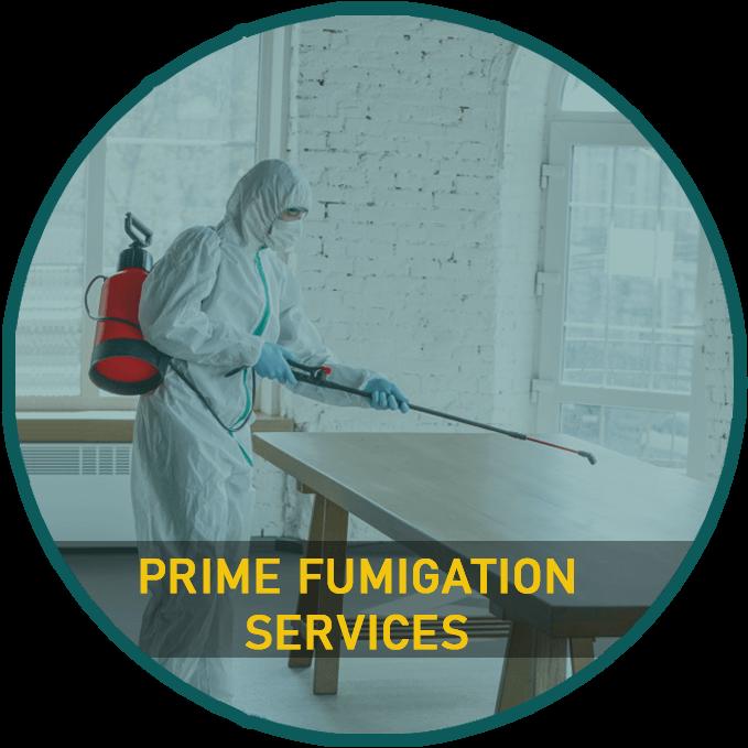 Prime fumigation services karachi